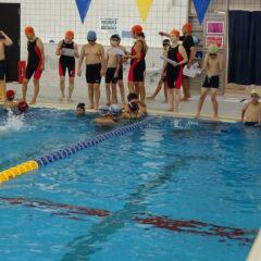 子ども・日本泳法・健康増進・成人水泳教室