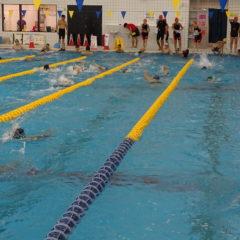 水泳教室の継続申込みのお知らせ